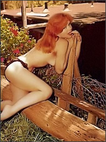 Yvette Vickers Vintage Burlesque Pinup and actress photo 1