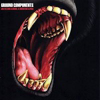 Ground Components: An Eye for a Brow a Tooth for a Pick CD