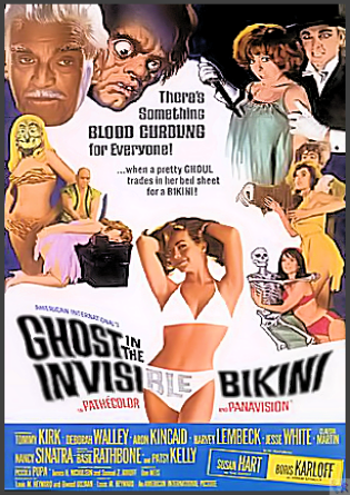 Ghost in the Invisible Bikini DVD