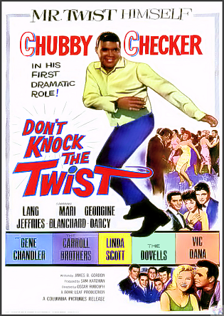 Don't Knock the Twist DVD: (The Twist)