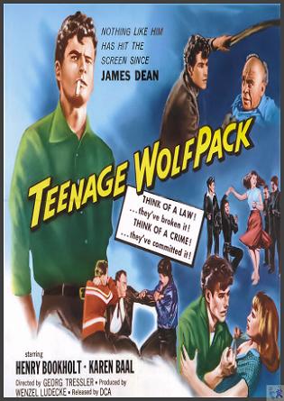 Teenage Wolfpack DVD