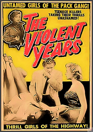 Violant Years DVD