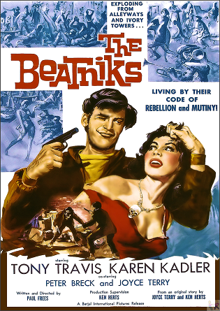 The Beatniks DVD