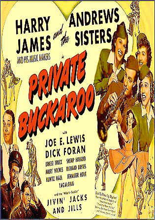 Private Buckaroo DVD