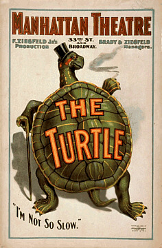 Florence Ziegfeld Jr. - The Turtle